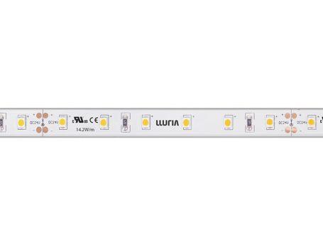 LXL-14'2det